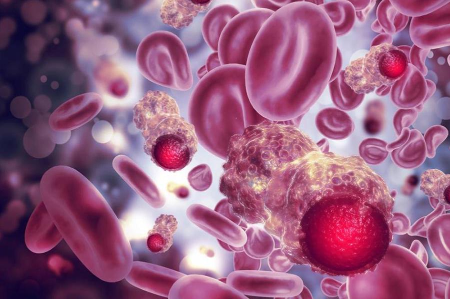 Maxx-saúde-memória-imunológica-é-promissora-no-combate-a-covid-19